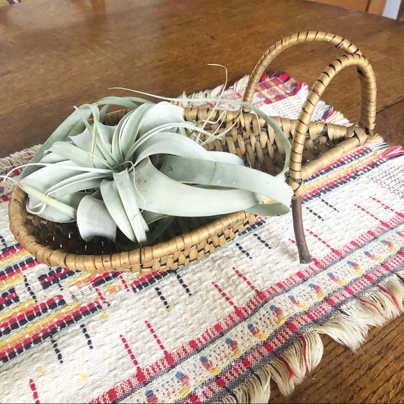 Vintage Wicker Centerpiece Plant Basket Boho Decor